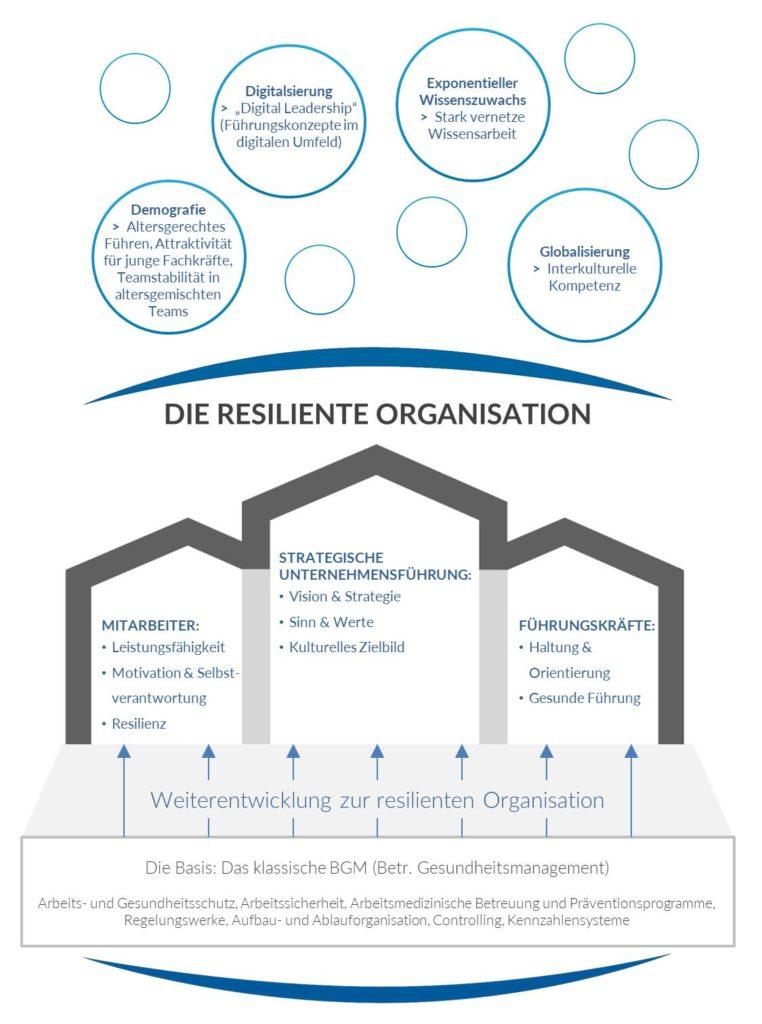 Der Weg zur resilienten Organisation