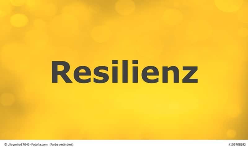Resilienz - Die Grundlagen
