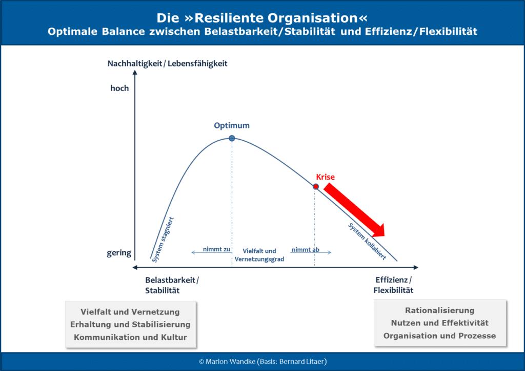 Infografik: Nachhaltigkeitskurve zur resilienten Organisation